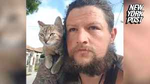 Stray cat travels the world on this man's shoulders [Video]