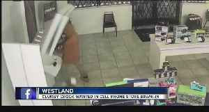 Ouch! Phone display falls on man robbing Westland Metro PCS store [Video]