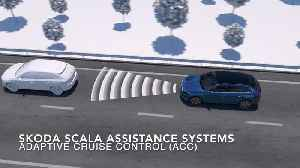 Skoda Scala Assistance Systems [Video]