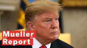 Only 29% of Americans Think The Mueller Report Clears Trump Of Wrongdoing [Video]