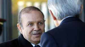 Algeria's President Steps Down Amid Widespread Protests [Video]