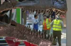 D.C.'s new dinosaur exhibit comes to life [Video]