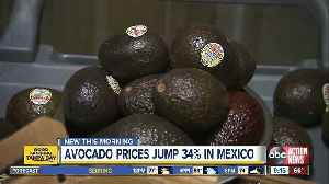 Avocado prices jump 34% in Mexico [Video]