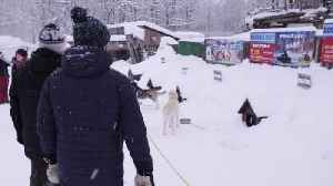 Dog sledding in Sapporo | Big in Japan: Season 2, Episode 3 [Video]