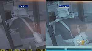 Seven Cars Broken Into Within Two Days In Lakeview Parking Garage [Video]