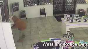 Michigan Police Keen to Get Cell of a Different Kind for Bungling Phone Store Burglar [Video]