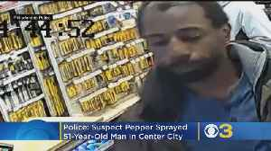 Suspect Pepper Sprays 51-Year-Old Man In Center City, Police Say [Video]