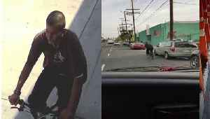 Bicyclist Arrested in At Least Nine Face-Slashing Attacks in Los Angeles [Video]
