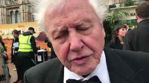 David Attenborough Reveals The One Thing We Can All To Do Protect Out Planet [Video]