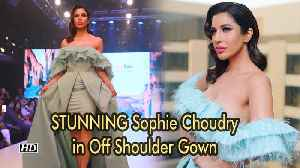 STUNNING Sophie Choudry in Off Shoulder Gown | Delhi Times Fashion Week [Video]