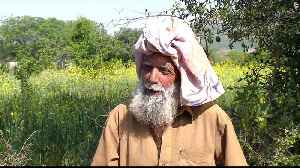 Pakistan's farmers struggle with rising inflation [Video]