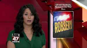 Suspect at large in armed robbery in Olivet [Video]
