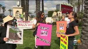 Protesters Come Out In Force To Demonstrate Against Horse Racing [Video]