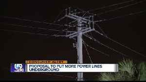 Florida bill would require electric companies to place more power lines underground [Video]