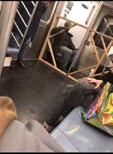 Man brings a big wooden rectangle frame with him on subway train [Video]