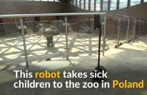 Robot offers virtual tour of zoo to sick kids in Poland [Video]