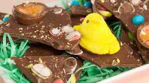 Easter Bark [Video]
