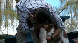 Dog Found on the Brink of Death in Utah Desert Reunited with Rescuer [Video]