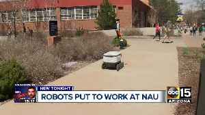 Northern Arizona University among first to get food delivery robots [Video]