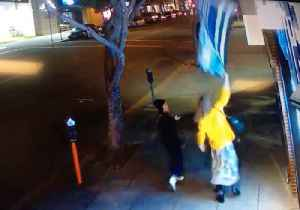 Police Seek Suspect Who Pulled Down 'Thin Blue Line' Flag in Alameda [Video]