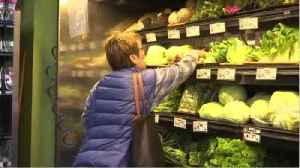 Health Officials Search For Cause Of E. Coli Outbreak [Video]