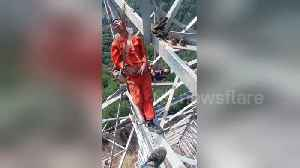 Chinese electrical workers nap on 50-metre-high transmission tower [Video]