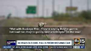 8-year-old girl falls from moving car [Video]