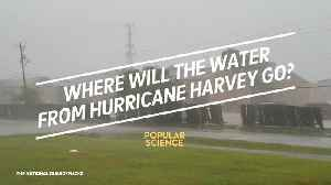 Where will the water from Hurricane Harvey go? [Video]