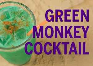 Green Monkey Drink Recipe [Video]