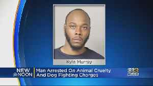 Man Arrested On Animal Cruelty, Dog Fighting Charges [Video]