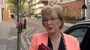 Leadsom: Extension won't change our minds on Brexit [Video]