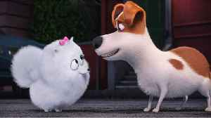 When Is The Trailer For 'Secret Life of Pets 2' Releasing? [Video]