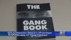 Inspector General Urges Overhaul Of Chicago Police Gang Database [Video]