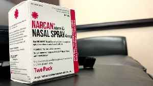 Deputy Saves Fellow Officer's Life with Narcan After Accidental Opioid Exposure [Video]
