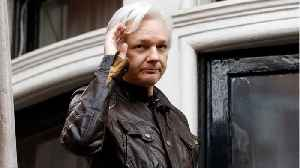 Assange Lawyers Say He May Risk Torture If Extradited To U.S. [Video]