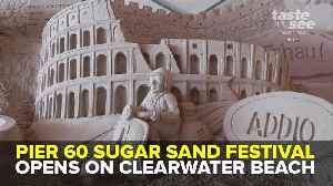 News video: Pier 60 Sugar Sand Festival opens on Clearwater Beach   Taste and See Tampa Bay