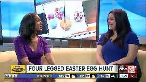 Hyde Park Easter Hunt for kids and dogs [Video]