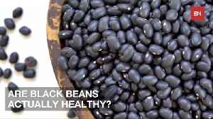 The Reasons You May Want To Eat Black Beans [Video]