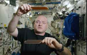 NASA Determines How Astronaut Scott Kelly's Body Changed In Space [Video]