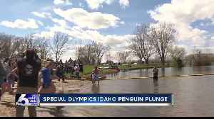 Special Olympics Idaho teams take 'Penguin Plunge' [Video]