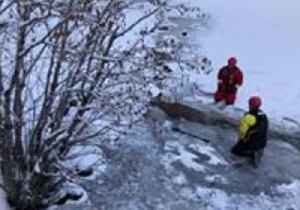 Colorado Firefighters Rescue Deer From Icy Lake [Video]
