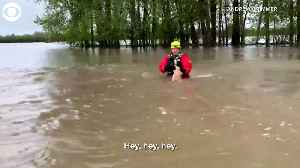 WEB EXTRA: Cat Saved From Floodwaters [Video]