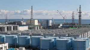 TEPCO Resumes Removing Fuel Rods at Fukushima Power Plant [Video]