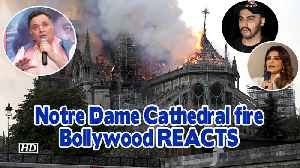 Notre Dame Cathedral fire | History in Ashes- Bollywood REACTS [Video]