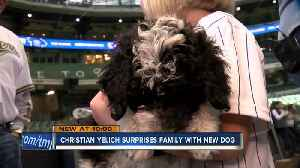 Milwaukee Brewers Christian Yelich helps dad make good on promise for puppy [Video]