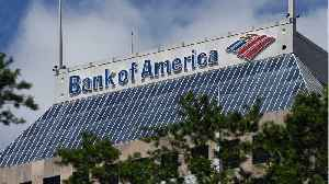Bank of America Reports Record Profits [Video]