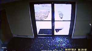 News video: Deer Brakes Into Delaware Church on a Sunday Morning