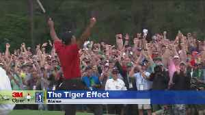 The 'Tiger Woods Effect' Is A Very Real Thing In The Golf Industry [Video]