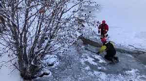 Fire department crew rescues deer from frozen lake [Video]