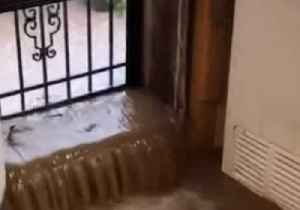 Flash Flooding in Virginia Hits Restaurant and Leaves 'Whole Road Looking Like a Creek' [Video]